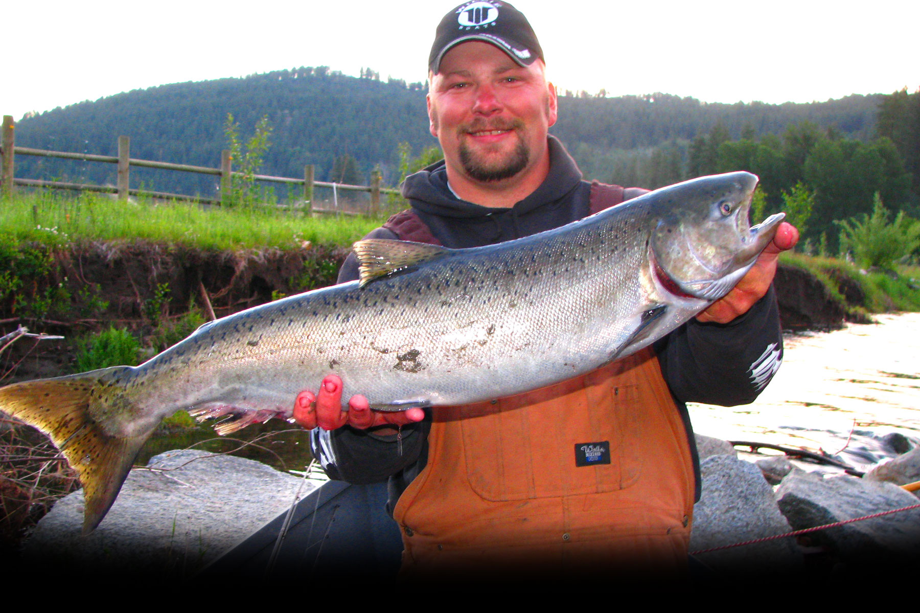 Hunting fishing in okanogan wa salmon fishing for Salmon fish pictures